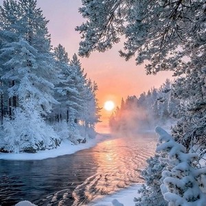 beautiful winter❄