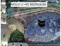 expert --( 91 9829916185 Love Problem ( Solution ) Molvi ji ... - all-problem-solution-astrologer photo