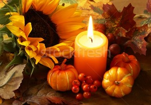 stock photo autumn still life