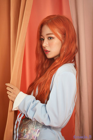 'From.9' جیکٹ behind - Chaeyoung