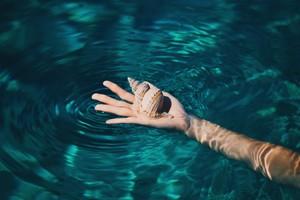 Aquatic Ripples