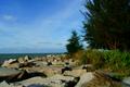 Berakas Town, Brunei  - beaches photo