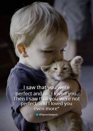 Cat Quote 😺