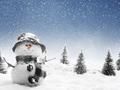 Christmas Snowman ⛄ - christmas photo
