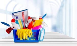 Cleaning franchise.JPG