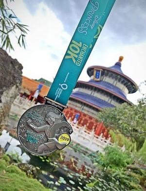 ডিজনি Princess এনচ্যান্টেড 10K মুলান Medal