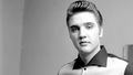 Elvis Presley - elvis-presley wallpaper