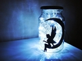Fairy Jar - fantasy photo