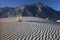 Grey Sand - random photo