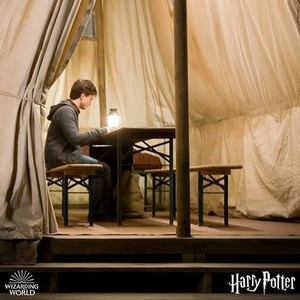 New/old pic of Harry from Harry Potter And The Deathly Hallows Part 1