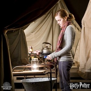 New/old pic of Hermione from Harry Potter And The Deathly Hallows Part 1
