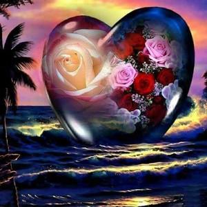 Rose corazón