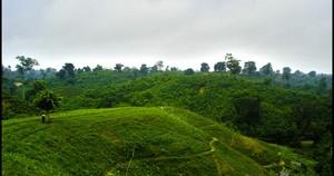 Sreemangal, Bangladesch