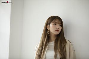 2019 Season's Greeting behind - Sowon