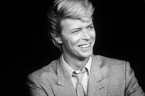 Davud David Bowie