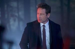 raposa Mulder