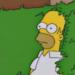 Homer Simpson - homer-simpson icon