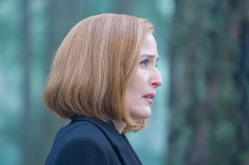 The X-Files fond d'écran called The X-Files