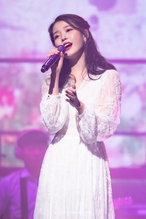 190105 IU 10th Anniversary 'DLWLRMA' Curtain Call buổi hòa nhạc in Jeju