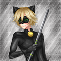 Chat Noir. - random fan art