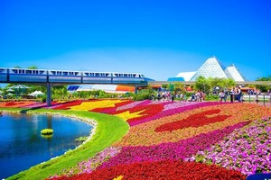Disneyworld Resort