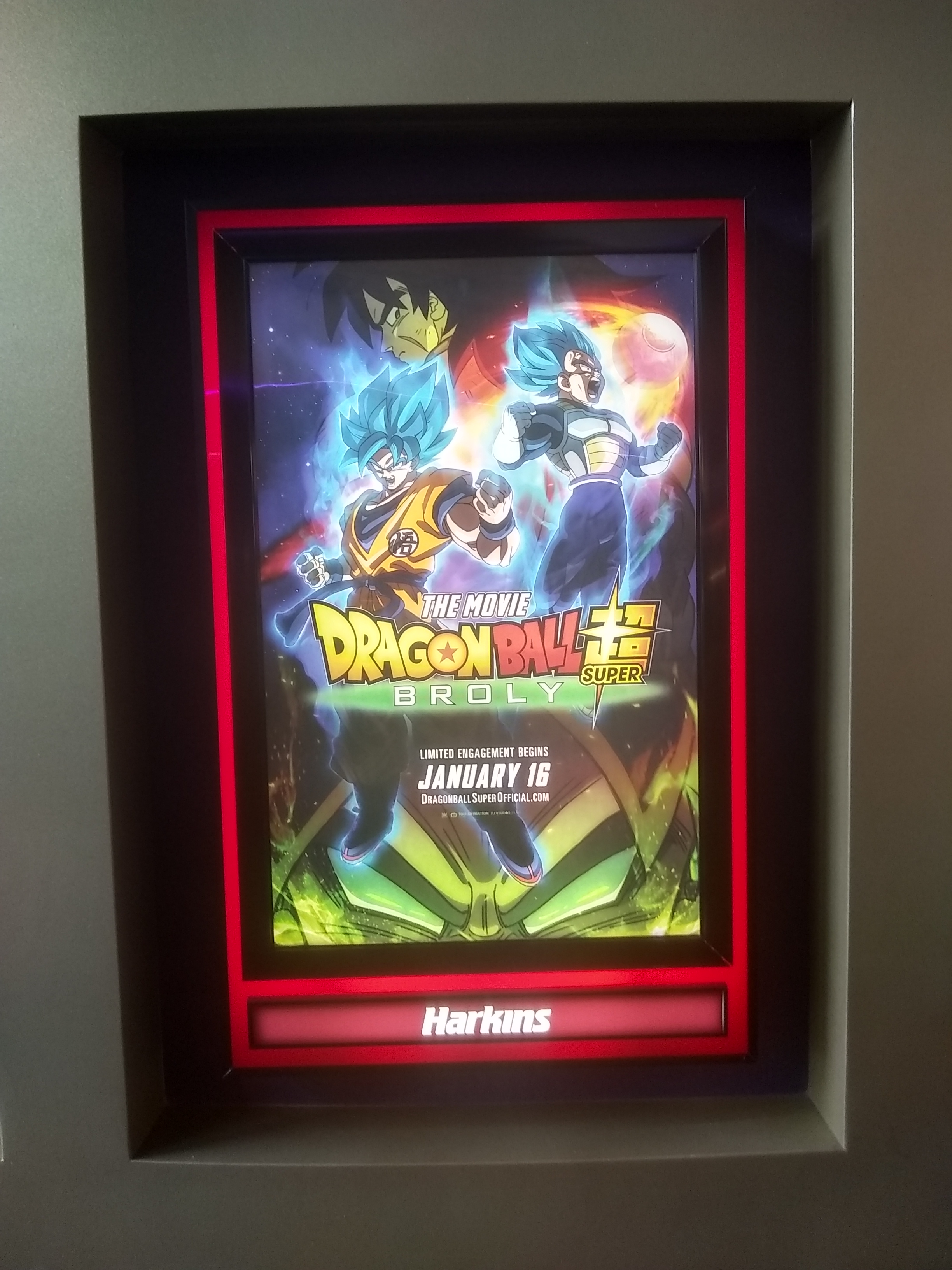 Dragon Ball Super Broly The Movie