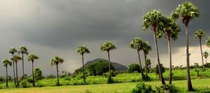 Palakkad, India