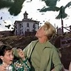 Classic Movies photo called The Birds