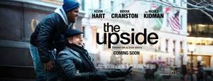 https://www.boredpanda.com/dvdrip-hdthe-upside-2019-movie-download-online-850mb/
