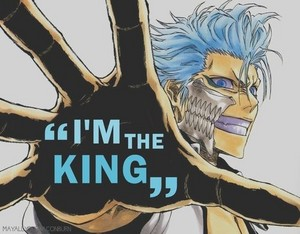 *Grimmjow Jeagerjaques *