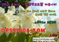 대전오피 ⸤⸤ opss 1004.cOm ⸥⸥ 오피쓰ユ대전스파⸦대전op - sensativemo photo