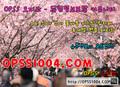 두정동오피 오피쓰 ⸤❴ opss 8989.cOm ❵⸥ 두정동스파 - sensativemo photo