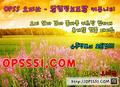 광명오피 ⟬⟬ opss070 . com ⟭⟭ 오피쓰품번추천 광명안마 - sensativemo photo