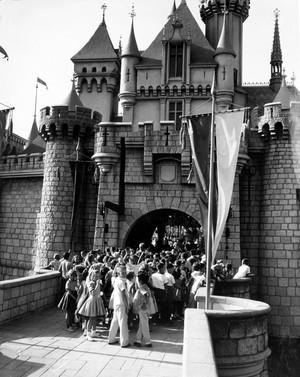 195t Grand Opening Of Disneyland