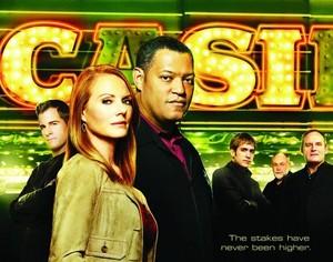 犯罪现场调查 Season 10