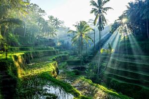 Canggu, Indonesia