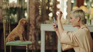 KATY PERRY upendo DOG