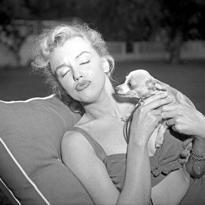 Marilyn And Her Puppy