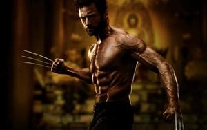 Wolverine wolpeyper