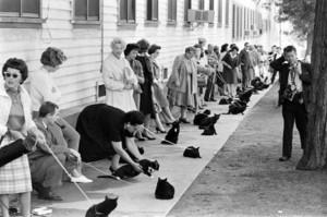 Black Cat Cast Auditions