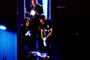 CSI ~ Family Affair