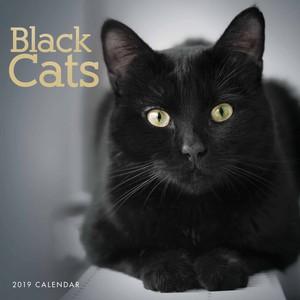 Calendar Pertaining To Black Cats