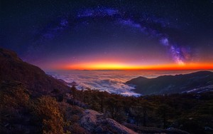 Nighttime Nature
