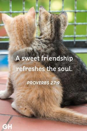 Proverbs 27, 9