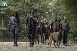9x09 ~ Adaptation ~ Michonne, Daryl, Eugene, Jesus, Aaron and Dog