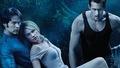 True Blood - television photo