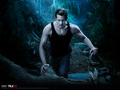 True Blood - television photo