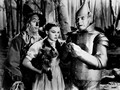 Dorothy Scarecrow Tinman and Toto - the-wizard-of-oz wallpaper