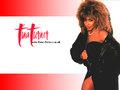 Tina Turner - cynthia-selahblue-cynti19 wallpaper