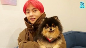 Taehyung and Yeontan